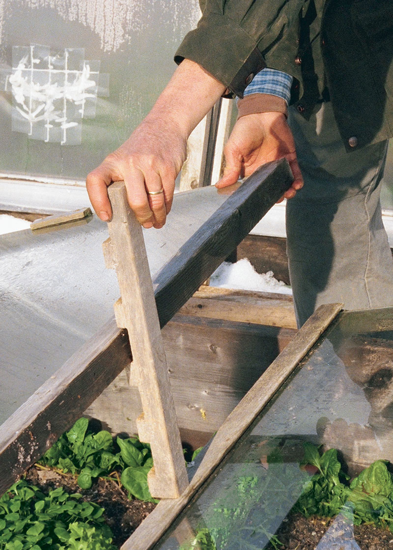 Manuallly venting the cold frame