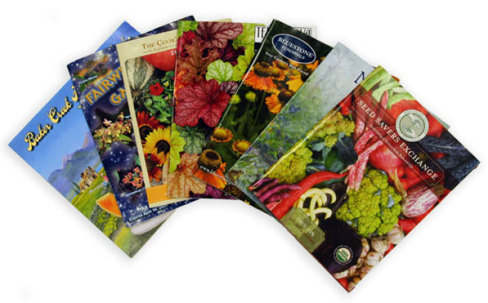 2010 seed catalogs