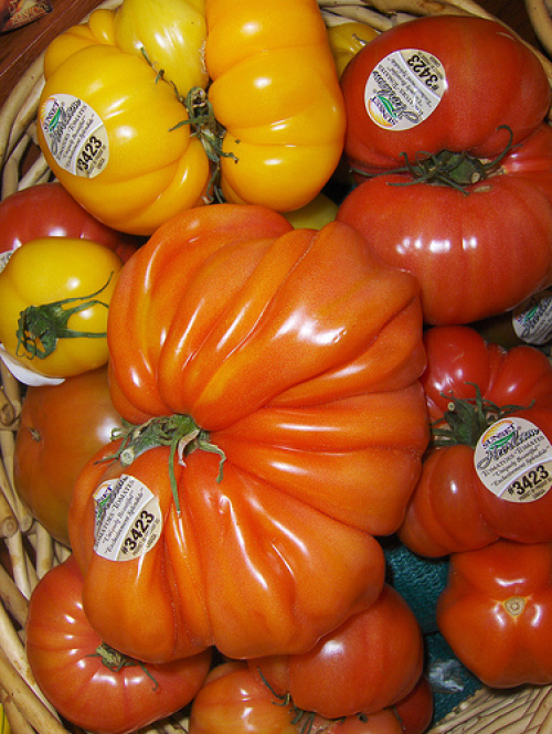 Tomato Trivia, Your Health,  And George Clooney
