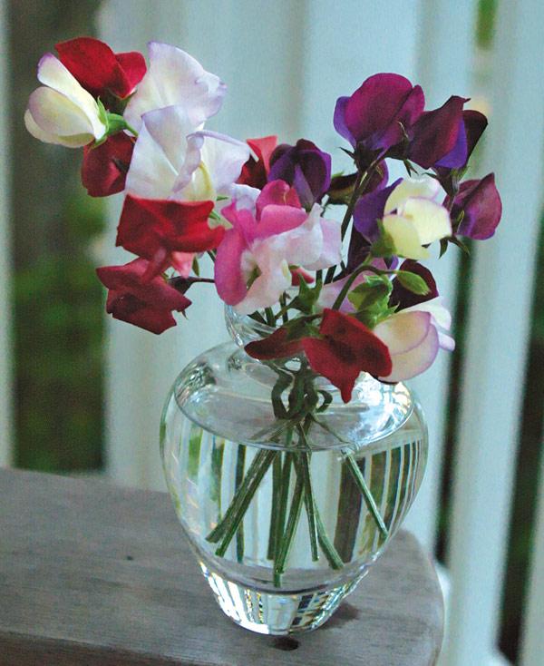 Flowers in a flower vase
