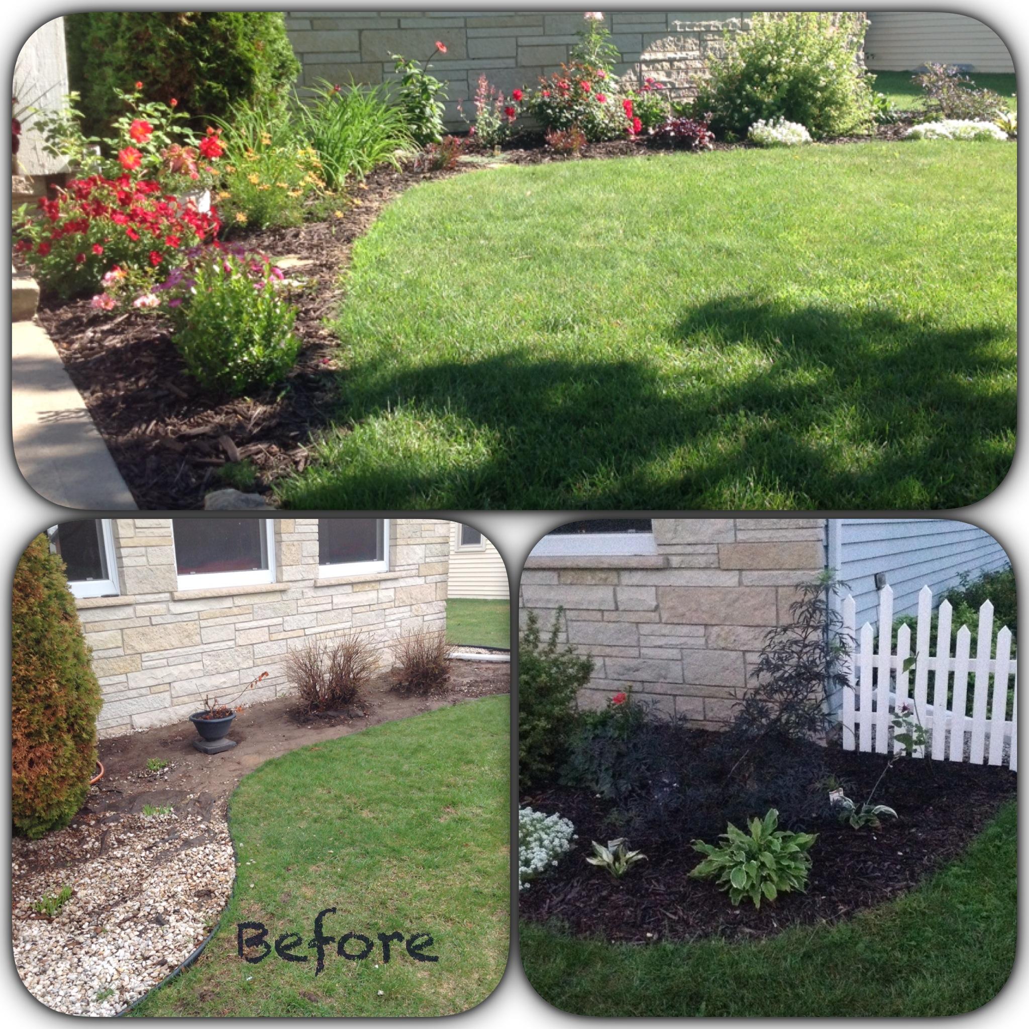 Colleen S New Garden In Wisconsin Finegardening