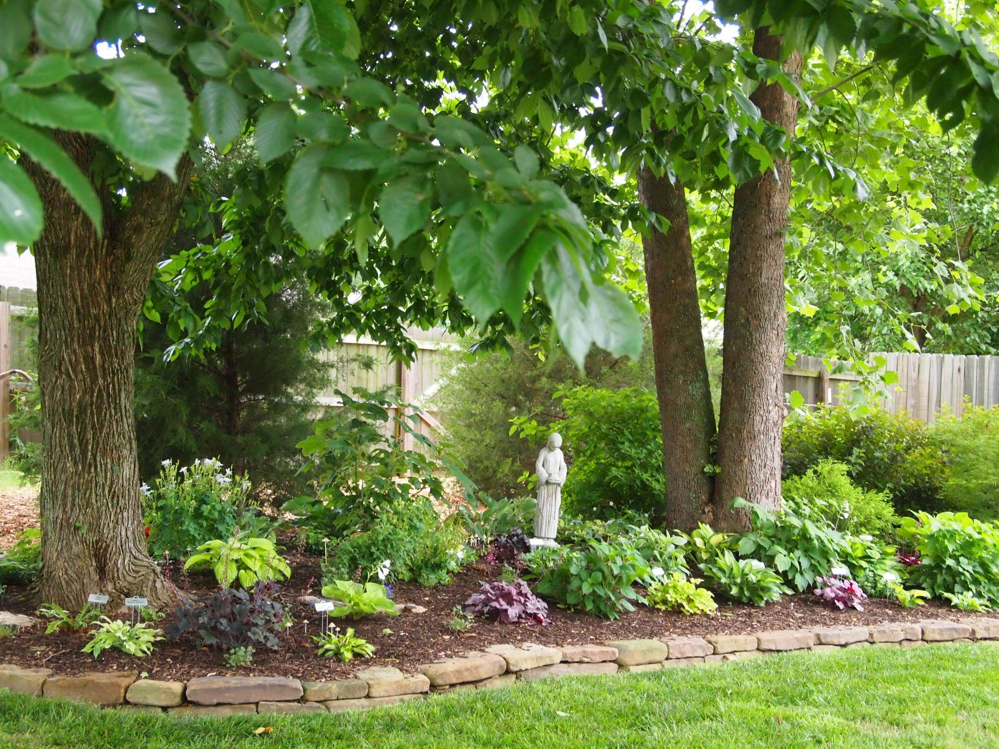 Sue S Gardens In Arkansas One Year Later Finegardening