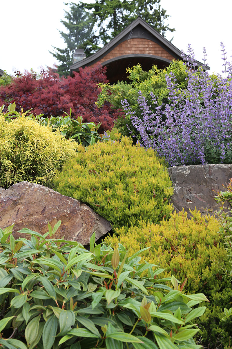 How do great garden designers do it? - FineGardening