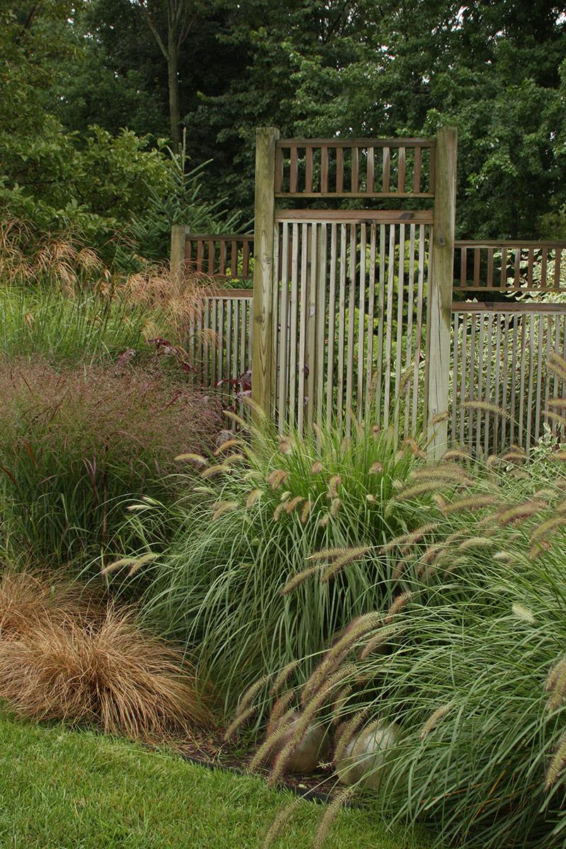 A Garden Of Grasses Finegardening