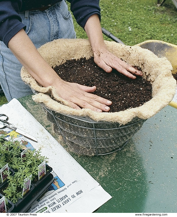 Prepare 20 quarts of hanging-basket soil mix and moisten it with 4 quarts of water.
