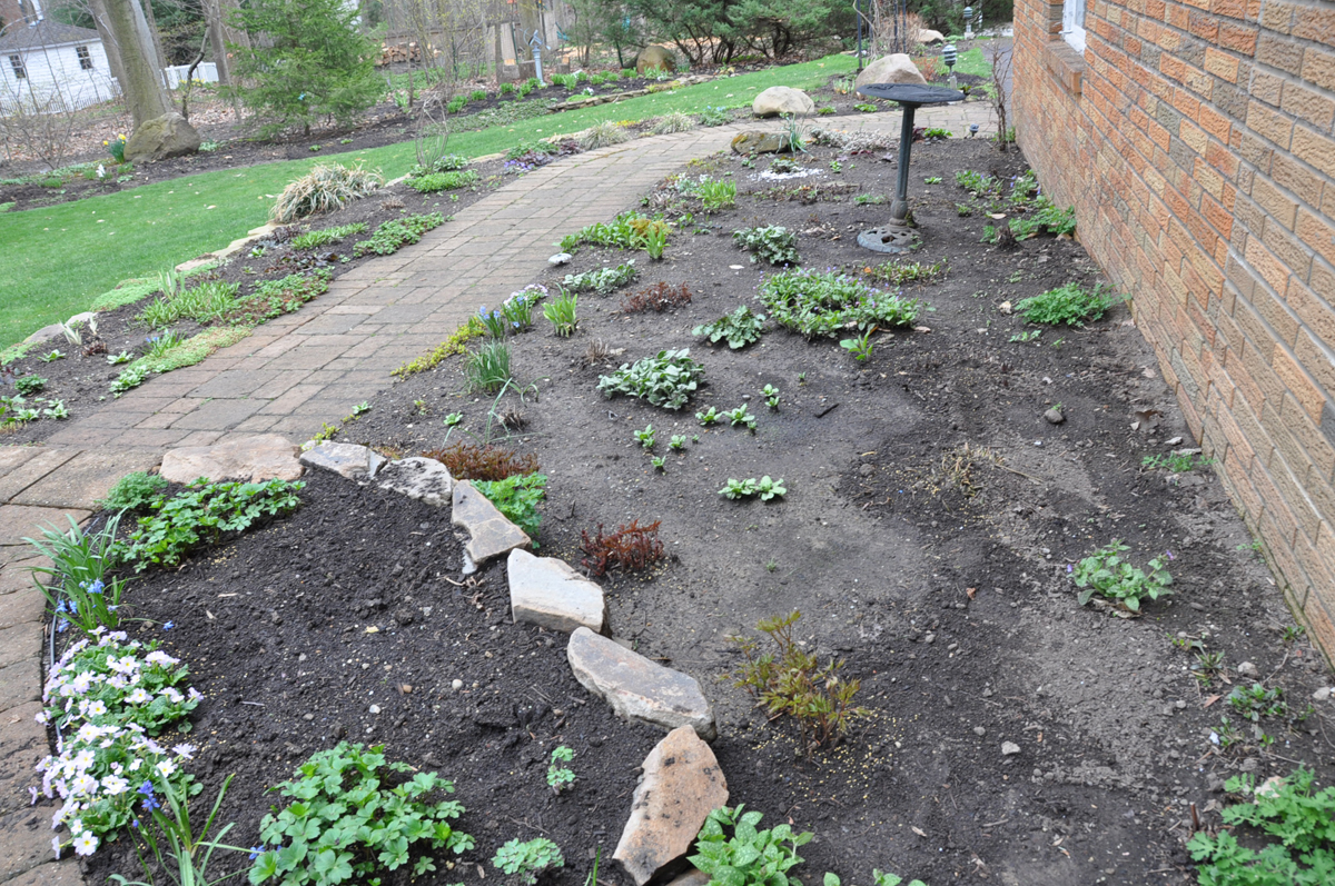 A Season In One Border In Daniela S Ohio Garden Finegardening
