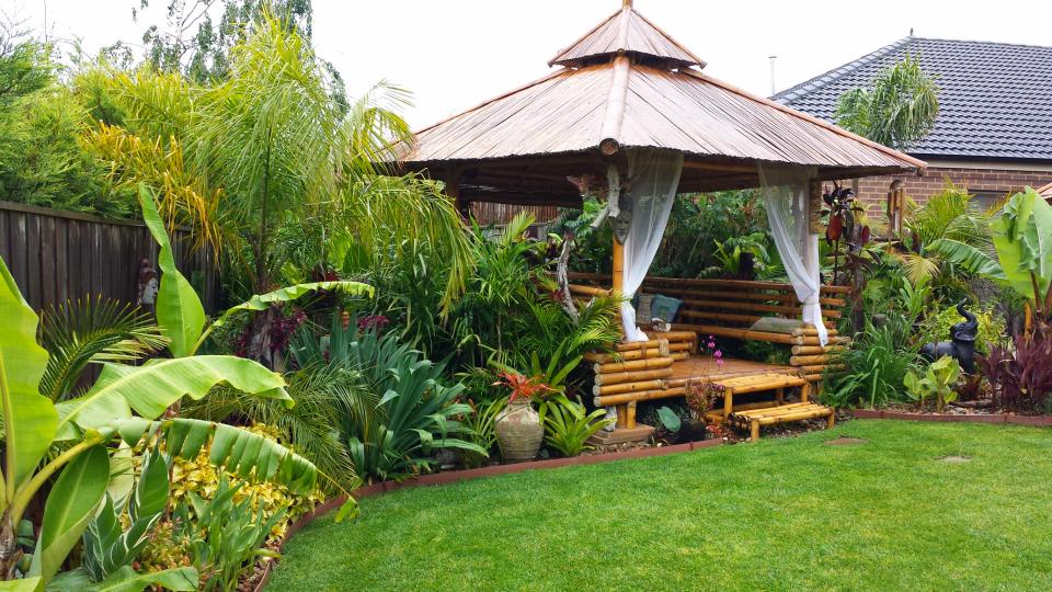 Daniel S Tropical Garden In Australia Finegardening