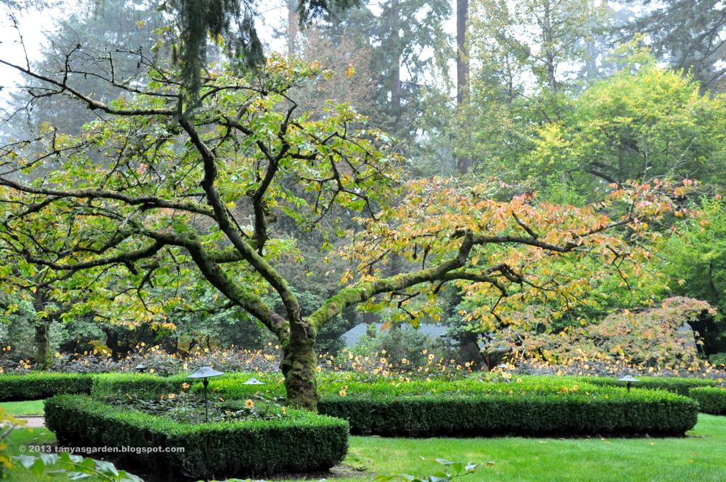 Tatyana S Visit To Lakewold Gardens In Washington Day 2