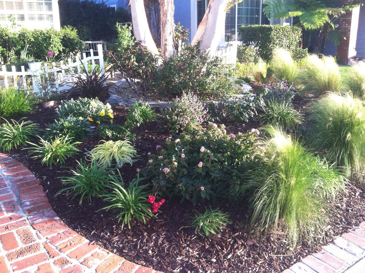 Karen's No-lawn Front Yard in Irvine - FineGardening on No Grass Garden Ideas  id=47505