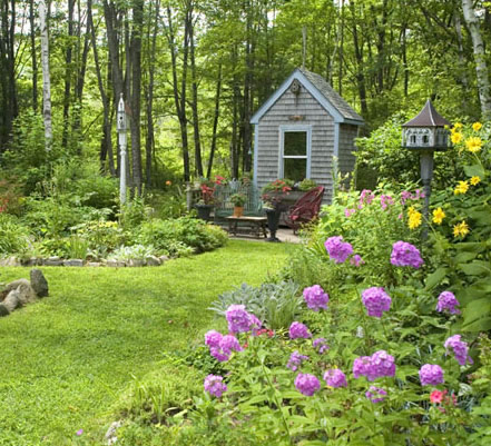 a shed surrounded by beautiful plants