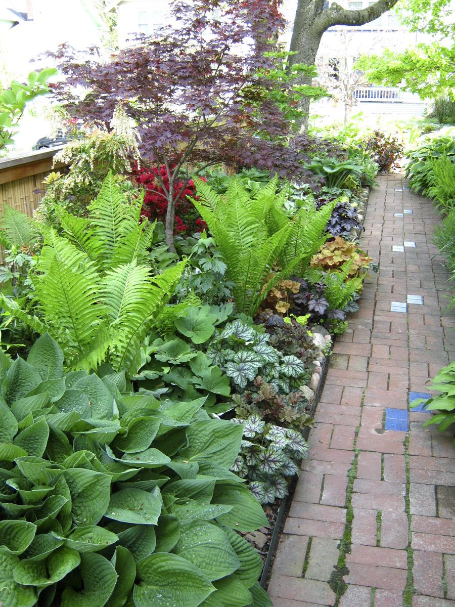 Tim S Side Garden In Ohio Revisited Finegardening
