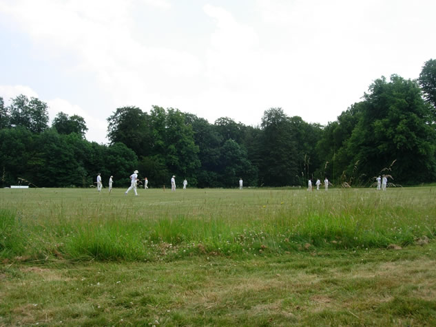 people playing a game on a patch of grass