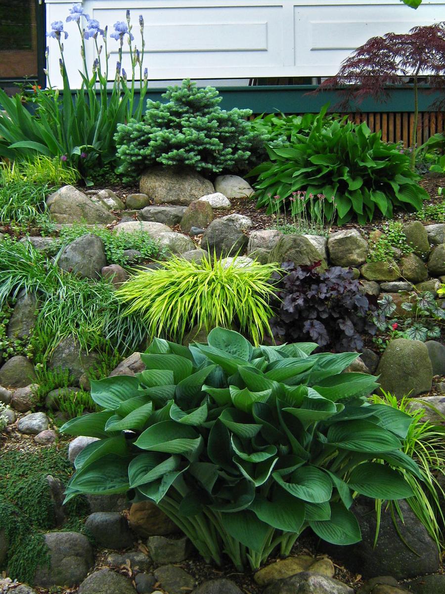 Reader Photos Tim S Garden In Ohio In Springtime Finegardening