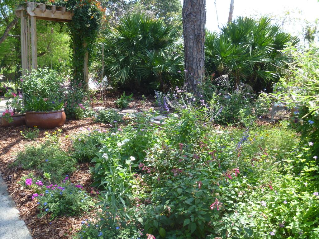 Reader Photos A Cottage Garden In Southern Florida Finegardening