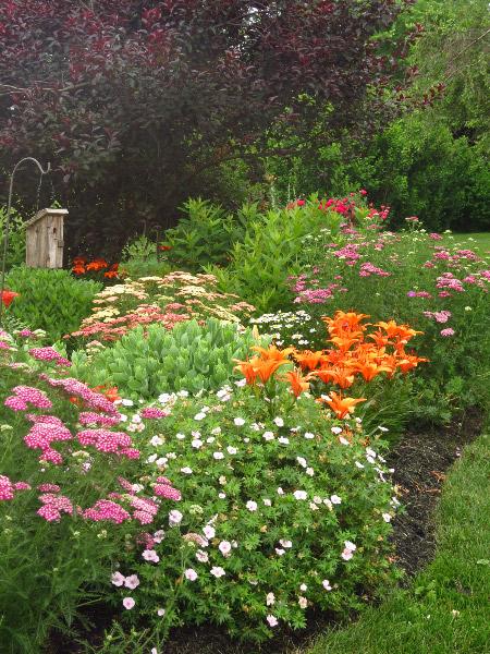 Carolyn S Garden For The Birds In Pennsylvania Finegardening