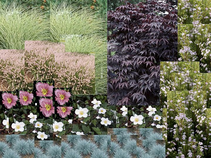 Easy Garden Simulations Win A Free Design Book Finegardening