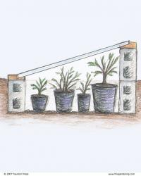 4 Ways to Use a Cold Frame - FineGardening