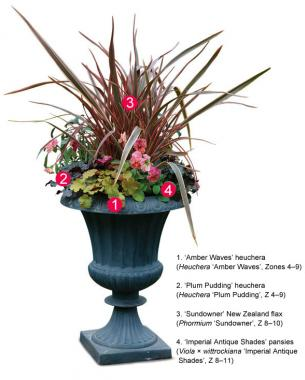 251 & Four Container Planting Ideas for Autumn - FineGardening