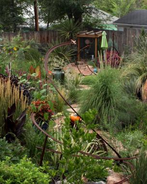 This garden is a classic case study in taking full advantage of microclimates and filling them with a seemingly impossible of diverse plants.