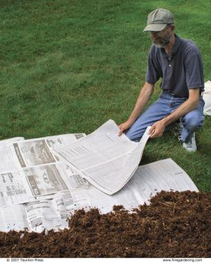 Four Ways To Remove Grass For A Garden Bed