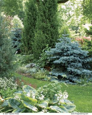 Superieur Fine Gardening Magazine
