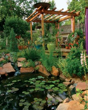 Bringing Sun And Shade Together Finegardening