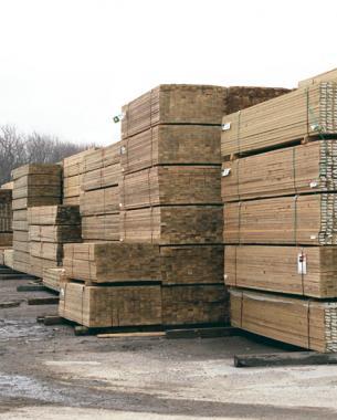 Does Pressure-Treated Wood Belong in Your Garden? - FineGardening
