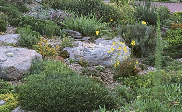Rock Garden Primer Finegardening