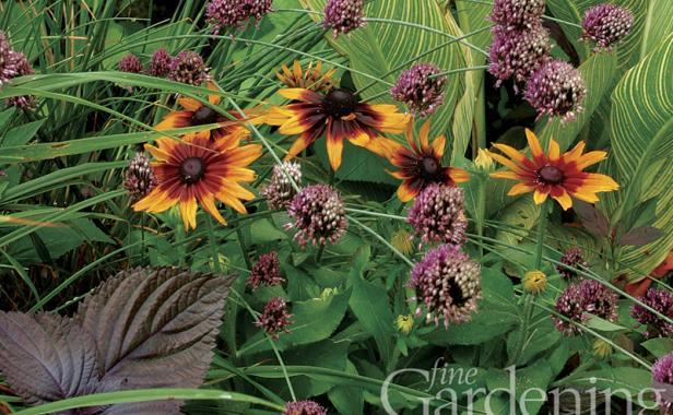 Fine Gardening Wallpaper Issue 112 Finegardening