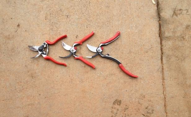 three models of secateurs corona tools for rose gardens